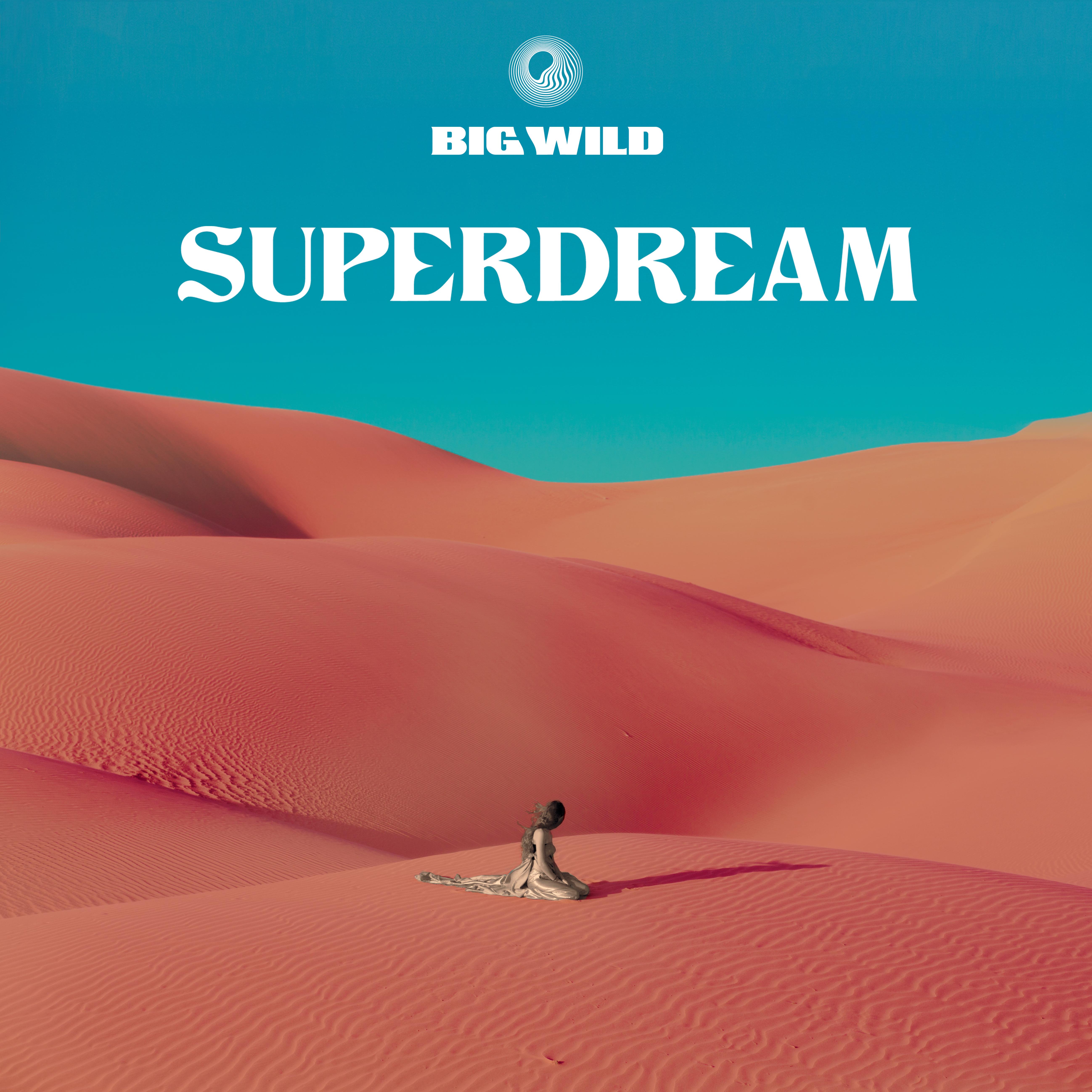 Big Wild - Superdream.jpg